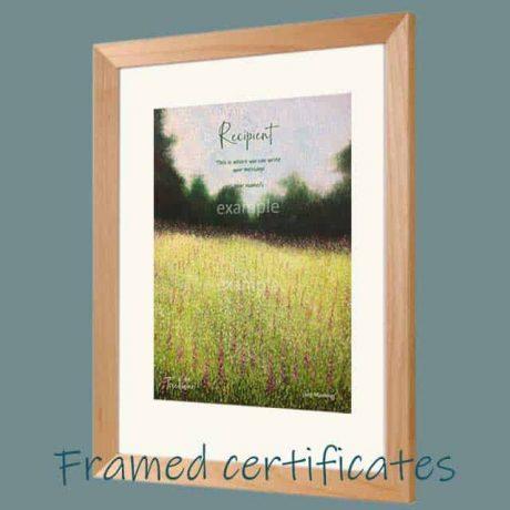 Buy a framed certificate