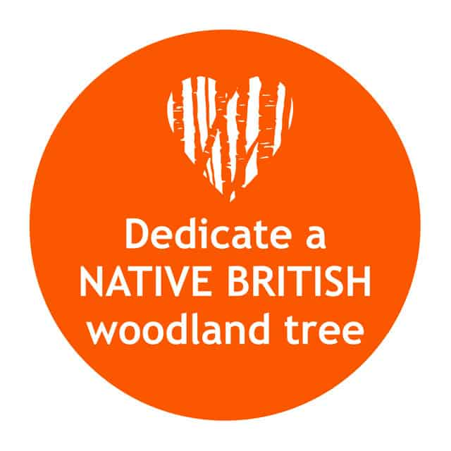 Dedicate a native British woodland tree with Treelover