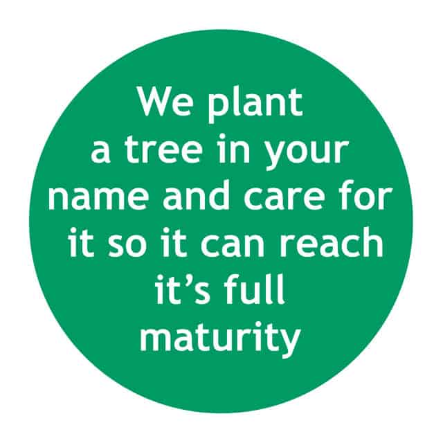 We plant a tree in your name and care for it so it can reach it's full maturity