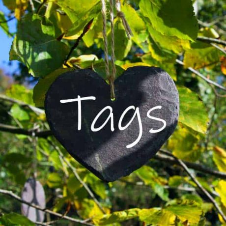 handmade welsh slate tree labels