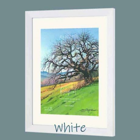 Buy a white wood picture frame