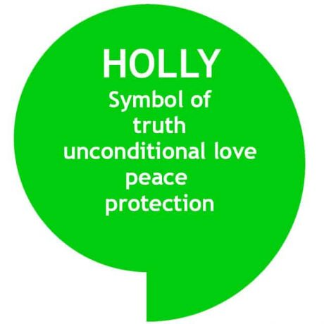 Bright green speech bubble with Holly tree symbolism