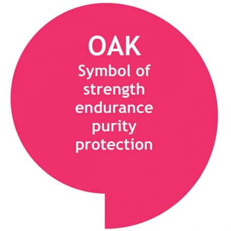 The oak tree, a uniquely important and probably the best loved tree
