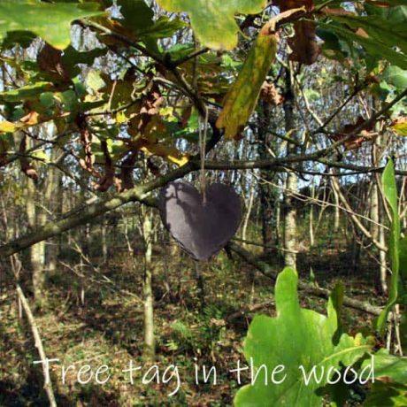 A treelover heart shaped tag on oak tree