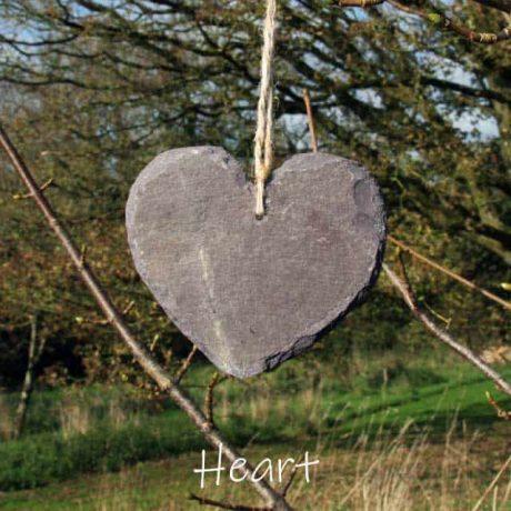 Tree lover heart shaped tree tag