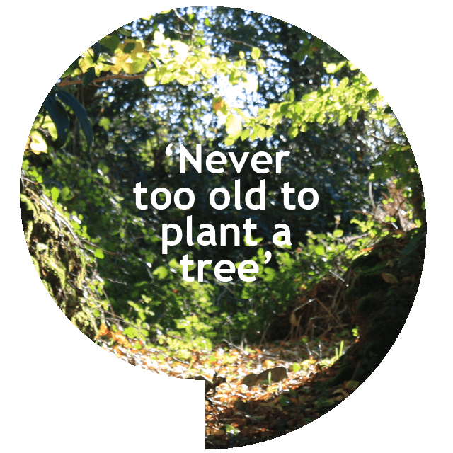 Never too old to plant a tree