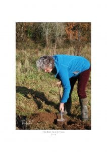 Family trees chosen and planted by Susan